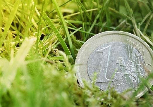 jardinier paysagiste en Île-de-France pas cher